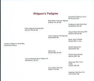 Widgeonswebpedigree